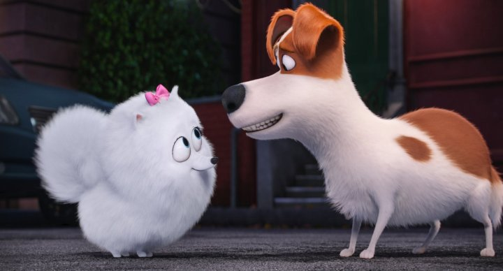 Film Review The Secret Lives of Pets